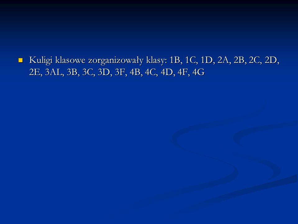 Kuligi klasowe zorganizowały klasy: 1B, 1C, 1D, 2A, 2B, 2C, 2D, 2E, 3AL, 3B, 3C, 3D, 3F, 4B, 4C, 4D, 4F, 4G Kuligi klasowe zorganizowały klasy: 1B, 1C