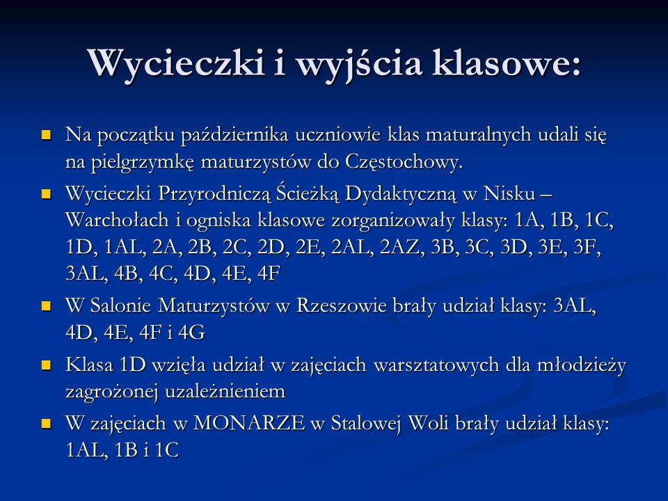 Wystawę plenerową Muzeum Regionalnego w Stalowej Woli pt: W cieniu swastyki obejrzały klasy 1AL, 2A, 2E, 3C, 4C, 4D.