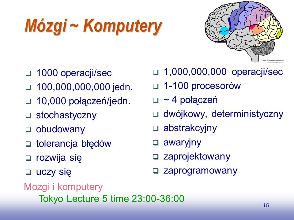 EE141 18 Mózgi ~ Komputery 1000 operacji/sec 100,000,000,000 jedn.