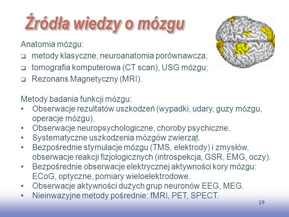 EE141 19 Źródła wiedzy o mózgu Anatomia mózgu: metody klasyczne, neuroanatomia porównawcza; tomografia komputerowa (CT scan), USG mózgu; Rezonans Magnetyczny (MRI).