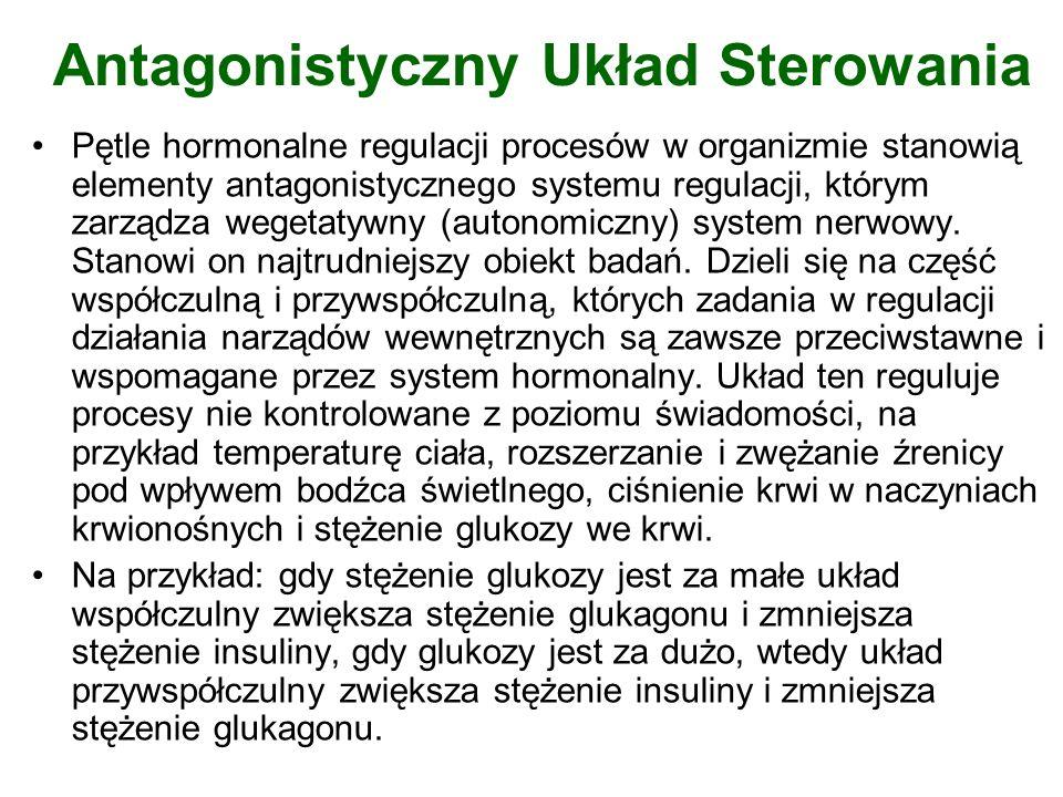 Antagonistyczny Układ Sterowania Pętle hormonalne regulacji procesów w organizmie stanowią elementy antagonistycznego systemu regulacji, którym zarząd