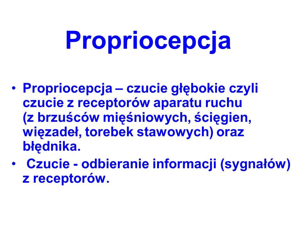 Propriocepcja Propriocepcja – czucie głębokie czyli czucie z receptorów aparatu ruchu (z brzuśców mięśniowych, ścięgien, więzadeł, torebek stawowych)