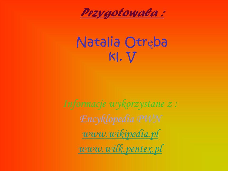 Przygotowała : Natalia Otr ę ba kl. V Informacje wykorzystane z : Encyklopedia PWN www.wikipedia.pl www.wilk.pentex.pl