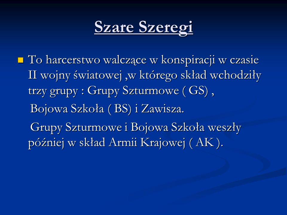 Szare Szeregi To harcerstwo walczące w konspiracji w czasie II wojny światowej,w którego skład wchodziły trzy grupy : Grupy Szturmowe ( GS), To harcer