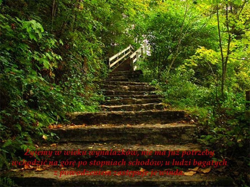 Żyjemy w wieku wynalazków, nie ma już potrzeby wchodzić na górę po stopniach schodów; u ludzi bogatych z powodzeniem zastępuje je winda.