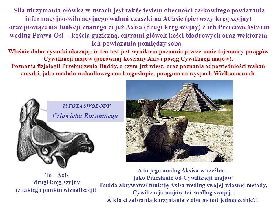 A to jego analog Aksisa w rzeźbie – jako Przesłanie od Cywilizacji majów! Budda aktywował funkcję Axisa według swojej własnej metody, Cywilizacja majó
