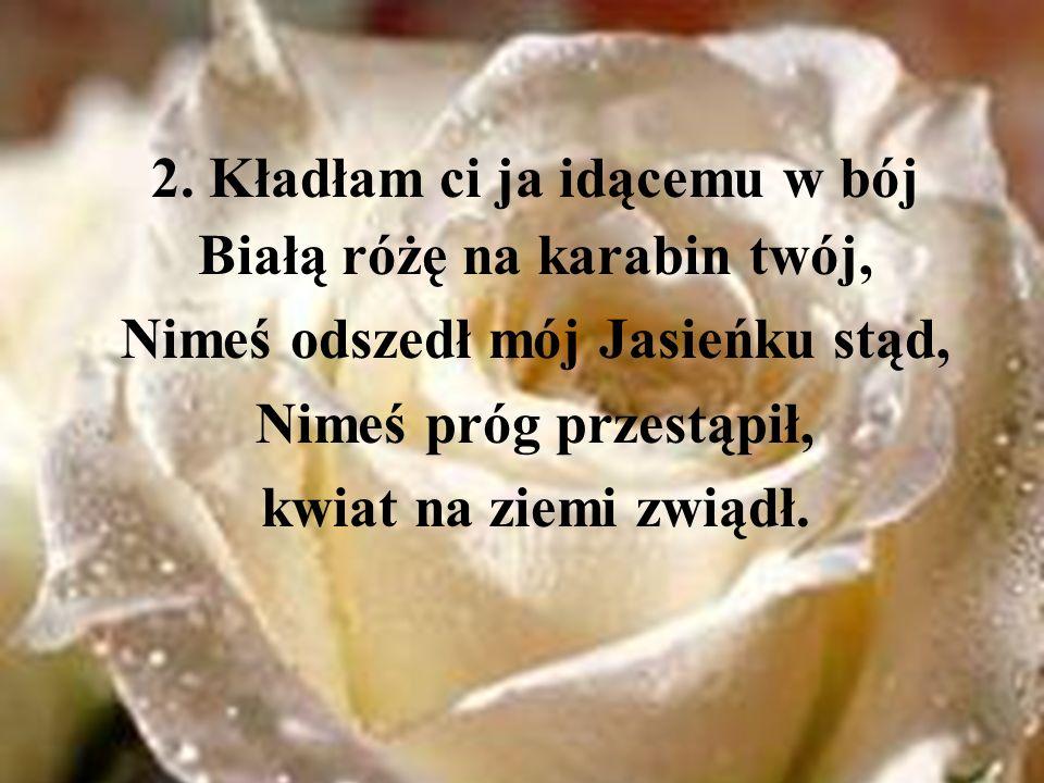 2. Kładłam ci ja idącemu w bój Białą różę na karabin twój, Nimeś odszedł mój Jasieńku stąd, Nimeś próg przestąpił, kwiat na ziemi zwiądł.