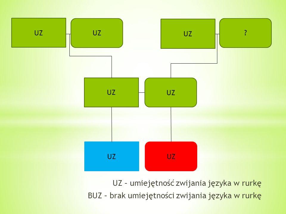 UZ ? UZ – umiejętność zwijania języka w rurkę BUZ – brak umiejętności zwijania języka w rurkę