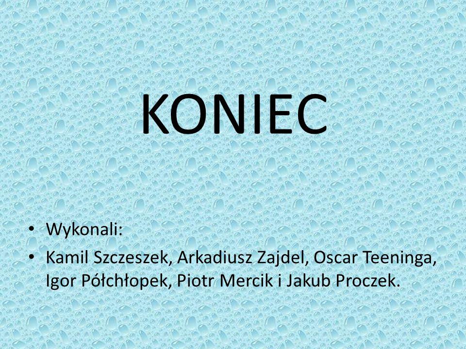 KONIEC Wykonali: Kamil Szczeszek, Arkadiusz Zajdel, Oscar Teeninga, Igor Półchłopek, Piotr Mercik i Jakub Proczek.