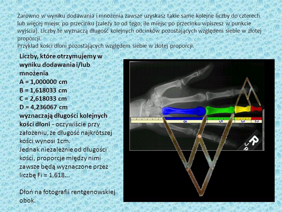 Złoty prostokąt – prostokąt, którego boki pozostają w złotym stosunku.