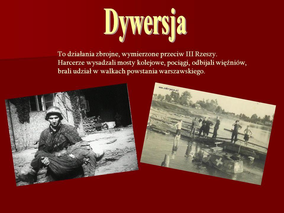 To działania zbrojne, wymierzone przeciw III Rzeszy. Harcerze wysadzali mosty kolejowe, pociągi, odbijali więźniów, brali udział w walkach powstania w