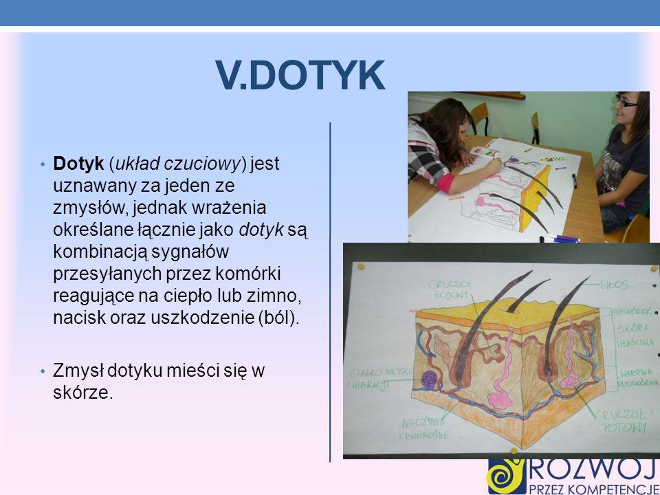 V.DOTYK Dotyk (układ czuciowy) jest uznawany za jeden ze zmysłów, jednak wrażenia określane łącznie jako dotyk są kombinacją sygnałów przesyłanych prz