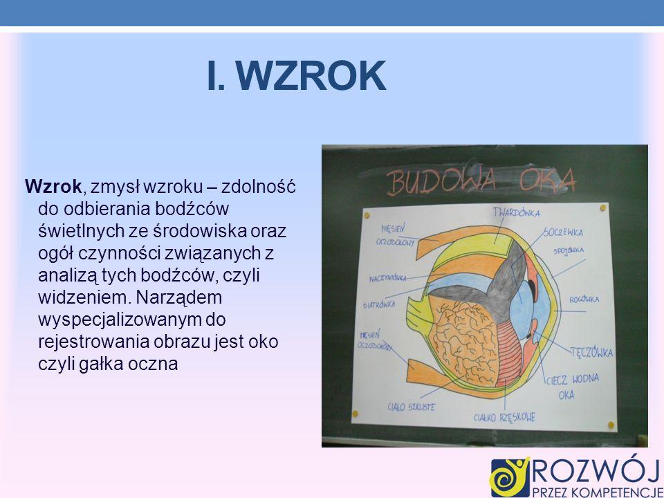 V.DOTYK Dotyk (układ czuciowy) jest uznawany za jeden ze zmysłów, jednak wrażenia określane łącznie jako dotyk są kombinacją sygnałów przesyłanych przez komórki reagujące na ciepło lub zimno, nacisk oraz uszkodzenie (ból).