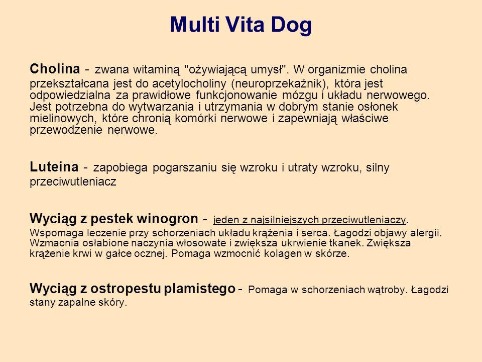 Multi Vita Dog Cholina - zwana witaminą ożywiającą umysł .