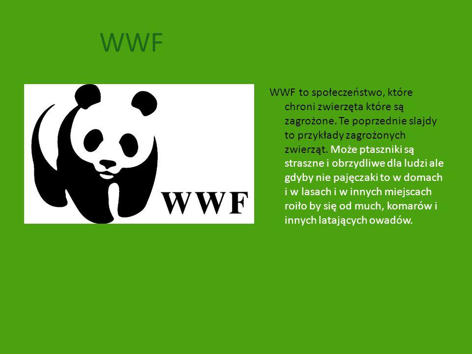 WWF WWF to społeczeństwo, które chroni zwierzęta które są zagrożone. Te poprzednie slajdy to przykłady zagrożonych zwierząt. Może ptaszniki są straszn
