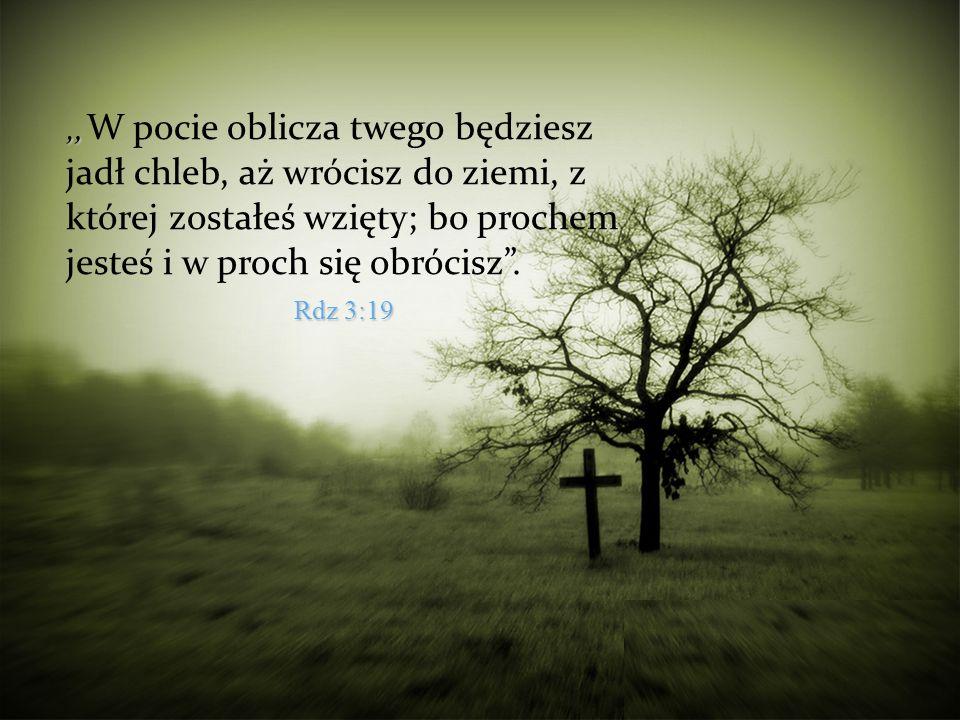 W pocie oblicza twego będziesz jadł chleb, aż wrócisz do ziemi, z której zostałeś wzięty; bo prochem jesteś i w proch się obrócisz. Rdz 3:19