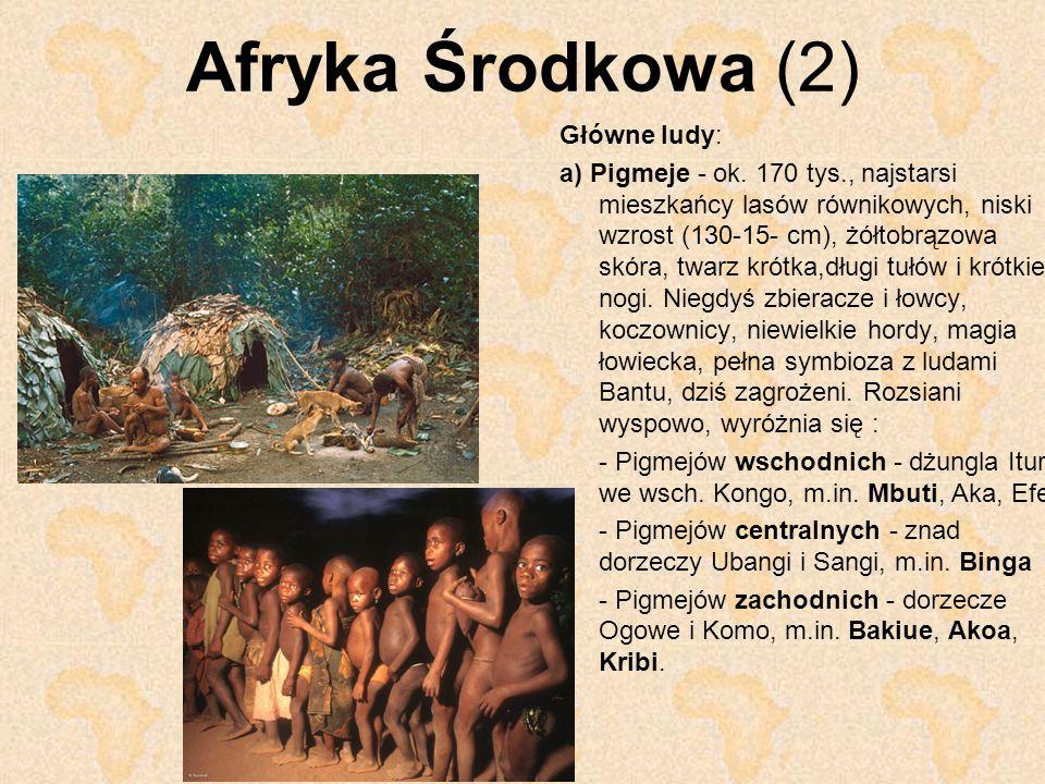 Afryka Środkowa (2) Główne ludy: a) Pigmeje - ok. 170 tys., najstarsi mieszkańcy lasów równikowych, niski wzrost (130-15- cm), żółtobrązowa skóra, twa