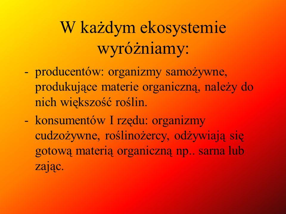 W każdym ekosystemie wyróżniamy: -producentów: organizmy samożywne, produkujące materie organiczną, należy do nich większość roślin. -konsumentów I rz