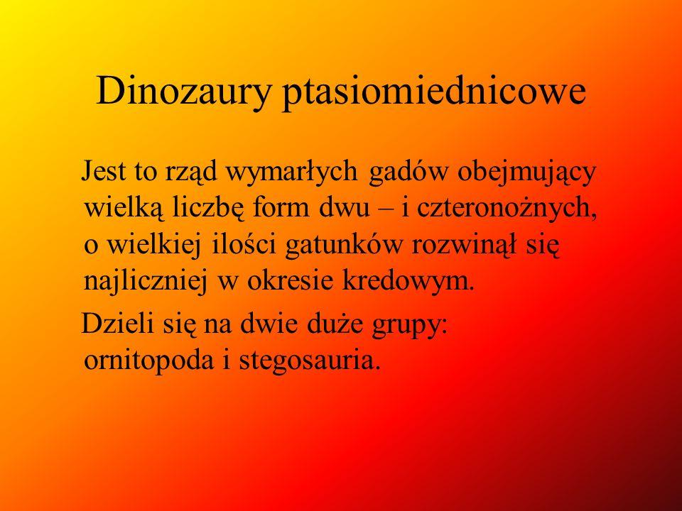 Dinozaury ptasiomiednicowe Jest to rząd wymarłych gadów obejmujący wielką liczbę form dwu – i czteronożnych, o wielkiej ilości gatunków rozwinął się n