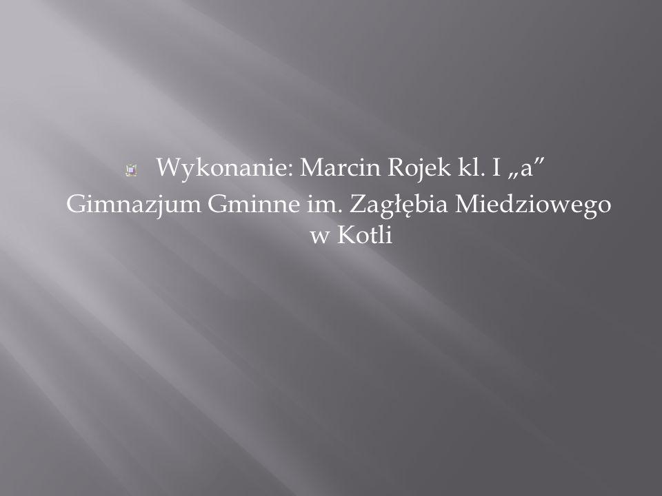 Wykonanie: Marcin Rojek kl. I a Gimnazjum Gminne im. Zagłębia Miedziowego w Kotli