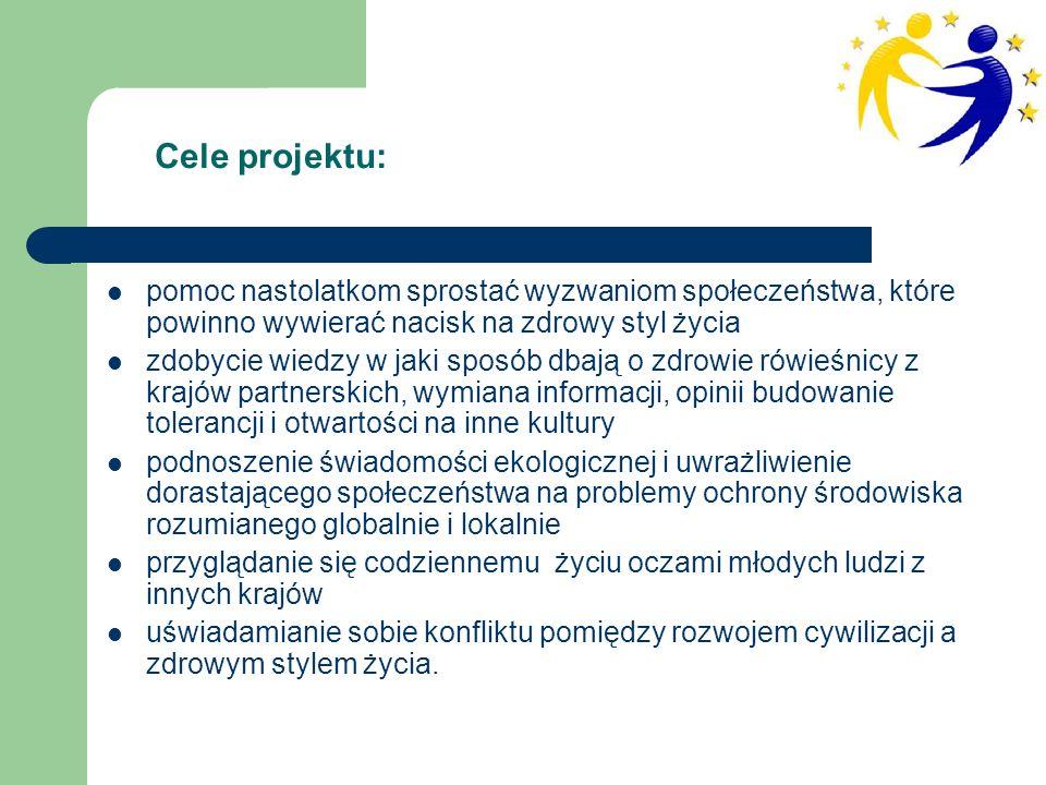 Prace uczniów nad projektem obejmowały następujące działania: