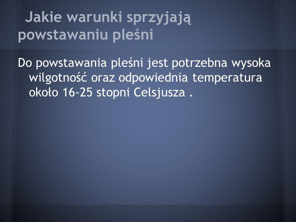 Jakie warunki sprzyjają powstawaniu pleśni Do powstawania pleśni jest potrzebna wysoka wilgotność oraz odpowiednia temperatura około 16-25 stopni Cels