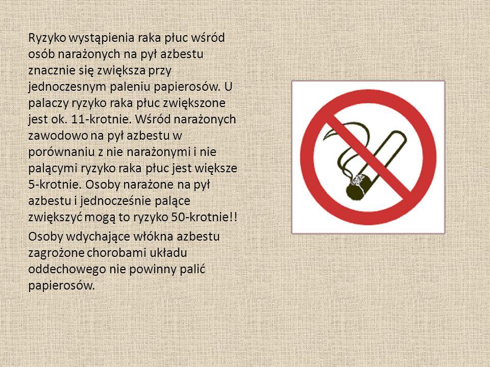 Ryzyko wystąpienia raka płuc wśród osób narażonych na pył azbestu znacznie się zwiększa przy jednoczesnym paleniu papierosów. U palaczy ryzyko raka pł