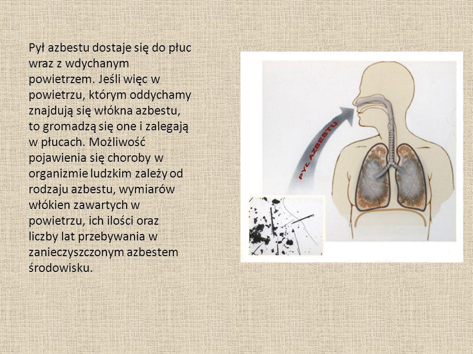 Pył azbestu dostaje się do płuc wraz z wdychanym powietrzem.