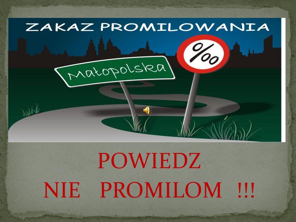 NO PROMIL NO PROBLEM to hasło kampanii społecznej do której po raz kolejny przystąpił Zespół Szkół Podstawowo – Gimnazjalnych w Podegrodziu.