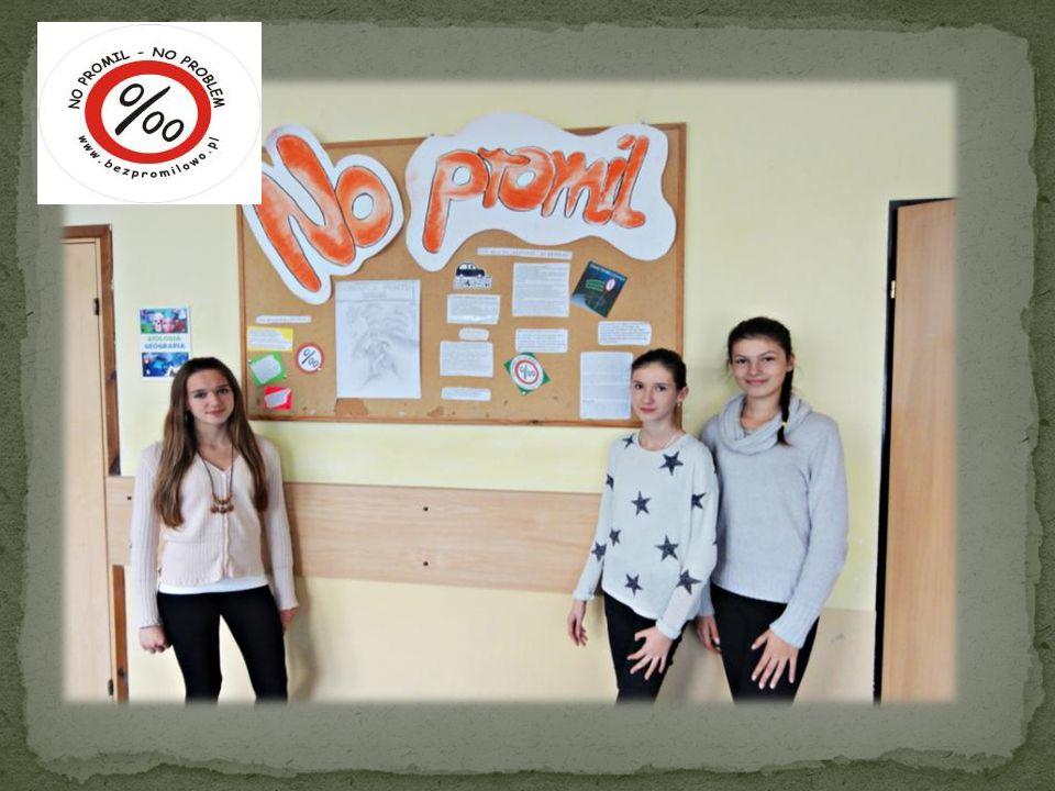 Promocja akcji rozpoczęła się 27 października 2013 roku, wówczas wolontariusze Szkolnego Koła Wolontariatu zbierali przy Kościele Parafialnym w Podegrodziu DEKLARACJE ODPOWIEDZIALNEGO ŚWIADKA/PASAŻERA.