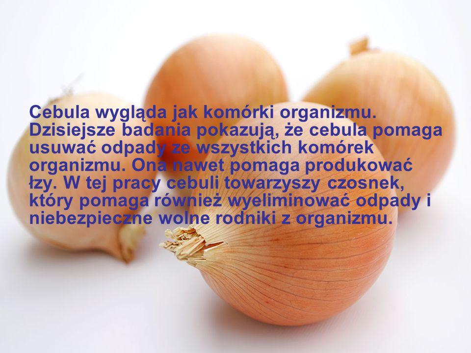 Pomarańcze, grejpfruty i inne owoce cytrusowe wyglądają jak gruczoły sutkowe kobiet i rzeczywiście pomagają utrzymać zdrowie piersi i przepływ limfy w piersiach.
