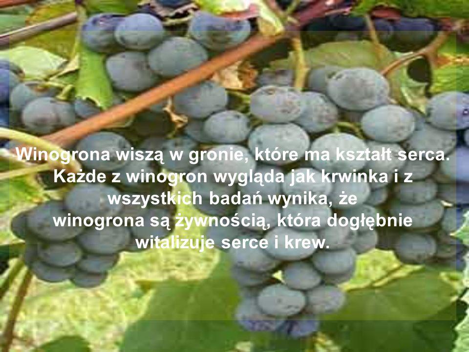 Winogrona wiszą w gronie, które ma kształt serca.