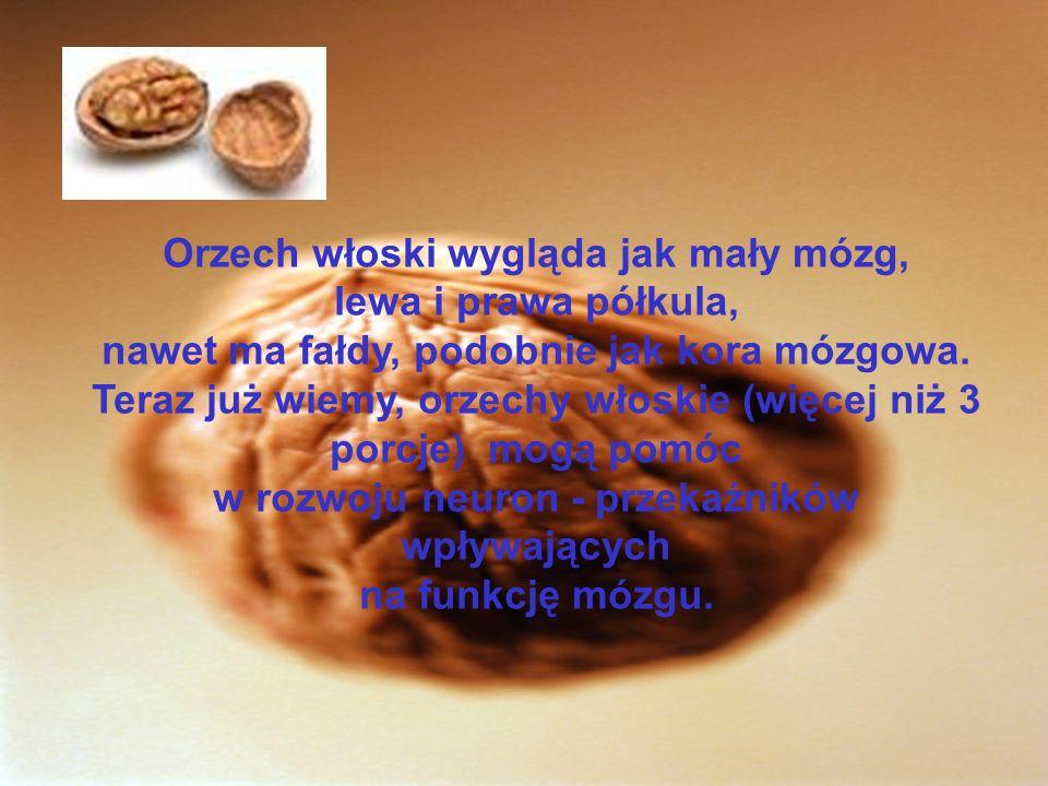 Orzech włoski wygląda jak mały mózg, lewa i prawa półkula, nawet ma fałdy, podobnie jak kora mózgowa.