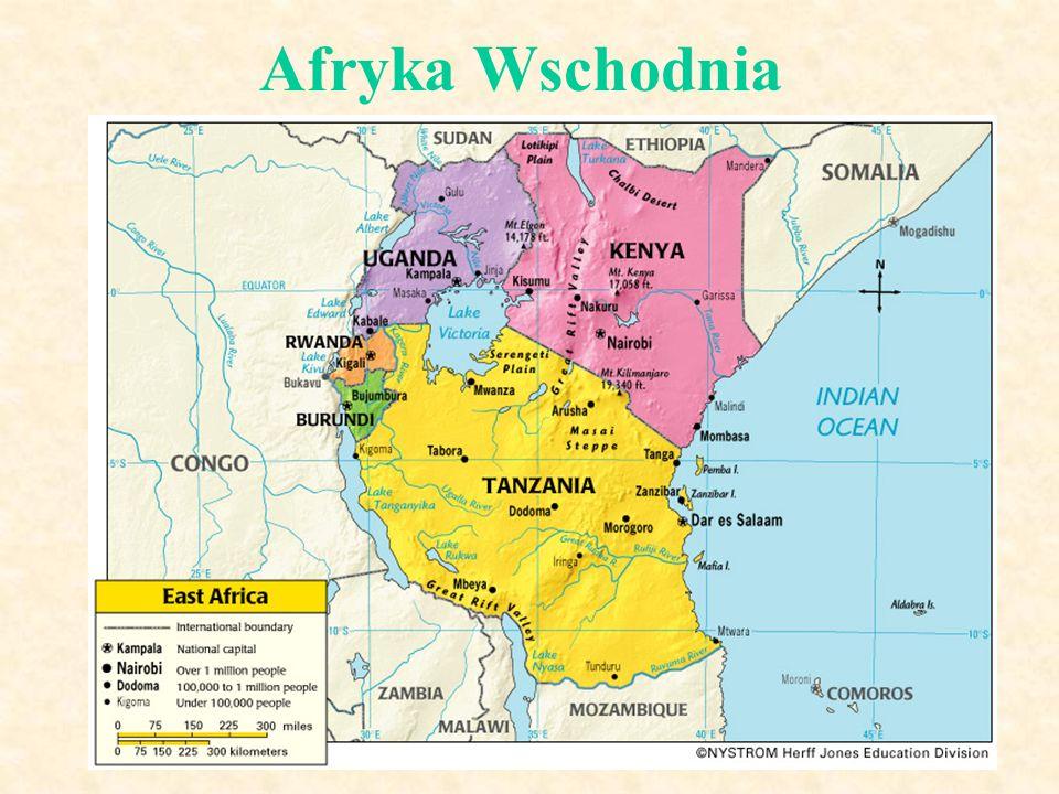 Afryka Wschodnia (7) Charakterystyka regionu: obszar ścierania się i asymilowania różnych grup ludności liczne konflikty, m.in.