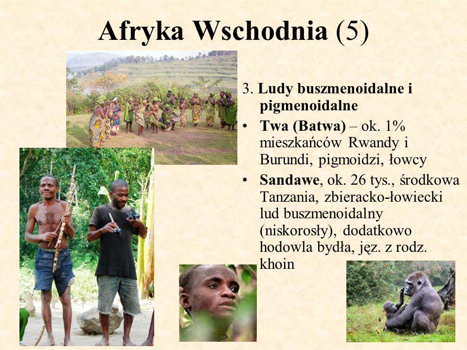 Afryka Wschodnia (5) 3. Ludy buszmenoidalne i pigmenoidalne Twa (Batwa) – ok. 1% mieszkańców Rwandy i Burundi, pigmoidzi, łowcy Sandawe, ok. 26 tys.,