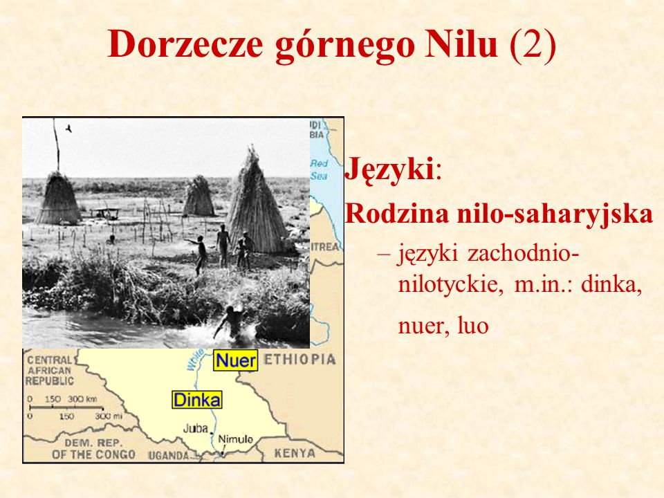 Dorzecze górnego Nilu (2) Języki: Rodzina nilo-saharyjska –języki zachodnio- nilotyckie, m.in.: dinka, nuer, luo