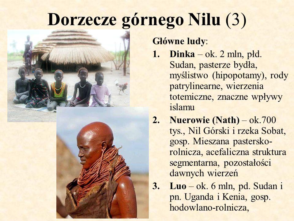 Dorzecze górnego Nilu (3) Główne ludy: 1.Dinka – ok. 2 mln, płd. Sudan, pasterze bydła, myślistwo (hipopotamy), rody patrylinearne, wierzenia totemicz