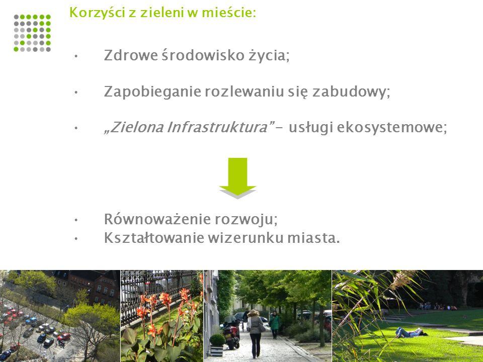Kluczowe problemy do rozwiązania: Powiązanie funkcji społecznych i przyrodniczych; Dostępność terenów zieleni i rekreacji w zasięgu pieszego dojścia od miejsca zamieszkania, pracy, nauki; Powiązania funkcjonalno - przestrzenne pomiędzy terenami; Odzyskiwanie powiązań przyrodniczych i wolnych przestrzeni; Wykorzystanie zasobów w przyrodniczych i kulturowych w planowaniu rozwoju miasta SYSTEM TERENÓW ZIELENI