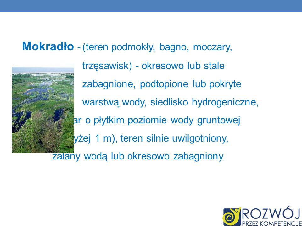 Mokradło -(teren podmokły, bagno, moczary, trzęsawisk) - okresowo lub stale zabagnione, podtopione lub pokryte warstwą wody, siedlisko hydrogeniczne,