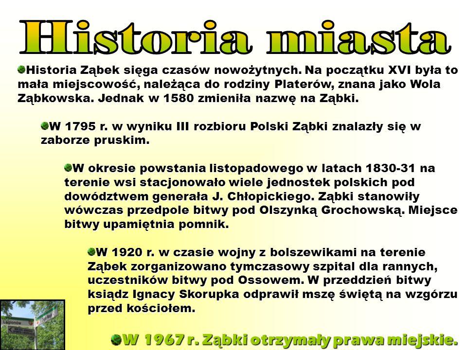 Historia Ząbek sięga czasów nowożytnych. Na początku XVI była to mała miejscowość, należąca do rodziny Platerów, znana jako Wola Ząbkowska. Jednak w 1