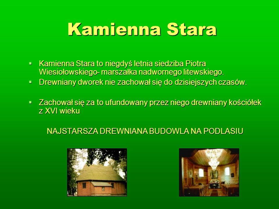 Kamienna Stara Kamienna Stara to niegdyś letnia siedziba Piotra Wiesiołowskiego- marszałka nadwornego litewskiego.