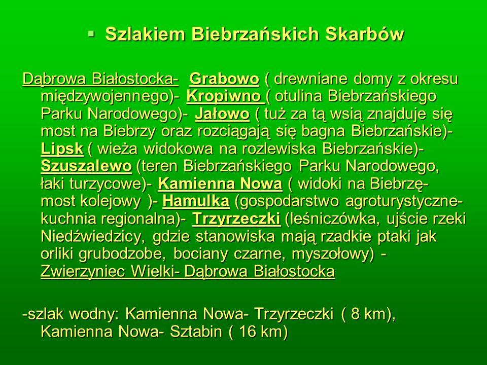 Szlakiem Biebrzańskich Skarbów Szlakiem Biebrzańskich Skarbów Dąbrowa Białostocka- Grabowo ( drewniane domy z okresu międzywojennego)- Kropiwno ( otulina Biebrzańskiego Parku Narodowego)- Jałowo ( tuż za tą wsią znajduje się most na Biebrzy oraz rozciągają się bagna Biebrzańskie)- Lipsk ( wieża widokowa na rozlewiska Biebrzańskie)- Szuszalewo (teren Biebrzańskiego Parku Narodowego, łaki turzycowe)- Kamienna Nowa ( widoki na Biebrzę- most kolejowy )- Hamulka (gospodarstwo agroturystyczne- kuchnia regionalna)- Trzyrzeczki (leśniczówka, ujście rzeki Niedźwiedzicy, gdzie stanowiska mają rzadkie ptaki jak orliki grubodzobe, bociany czarne, myszołowy) - Zwierzyniec Wielki- Dąbrowa Białostocka -szlak wodny: Kamienna Nowa- Trzyrzeczki ( 8 km), Kamienna Nowa- Sztabin ( 16 km)