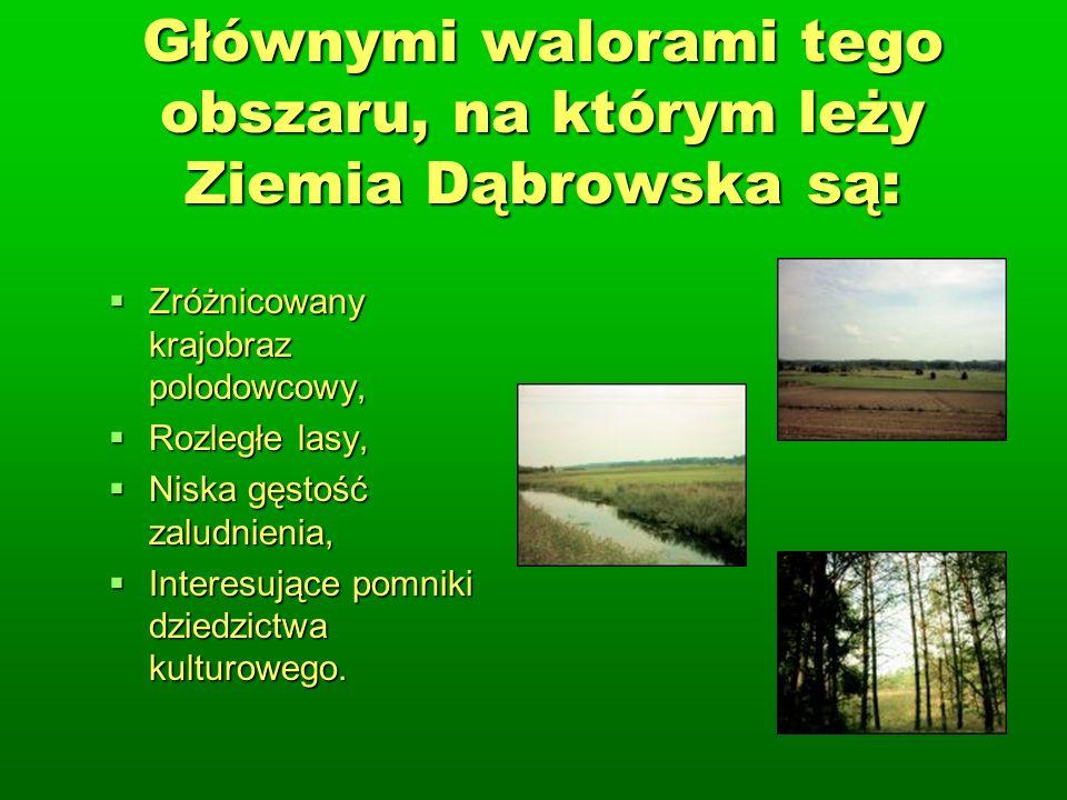 Głównymi walorami tego obszaru, na którym leży Ziemia Dąbrowska są: Zróżnicowany krajobraz polodowcowy, Zróżnicowany krajobraz polodowcowy, Rozległe lasy, Rozległe lasy, Niska gęstość zaludnienia, Niska gęstość zaludnienia, Interesujące pomniki dziedzictwa kulturowego.