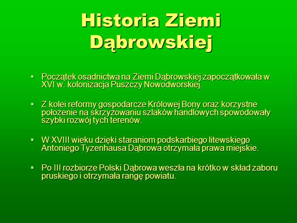 Historia Ziemi Dąbrowskiej Początek osadnictwa na Ziemi Dąbrowskiej zapoczątkowała w XVI w.