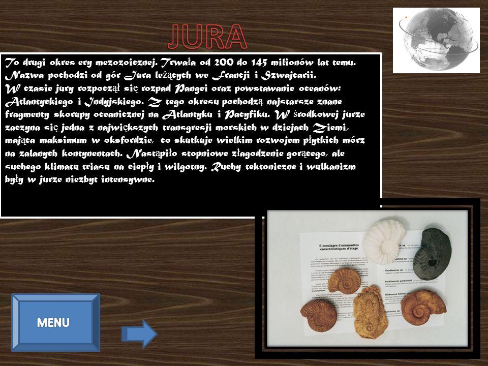 To drugi okres ery mezozoicznej. Trwa ł a od 200 do 145 milionów lat temu. Nazwa pochodzi od gór Jura le żą cych we Francji i Szwajcarii. W czasie jur