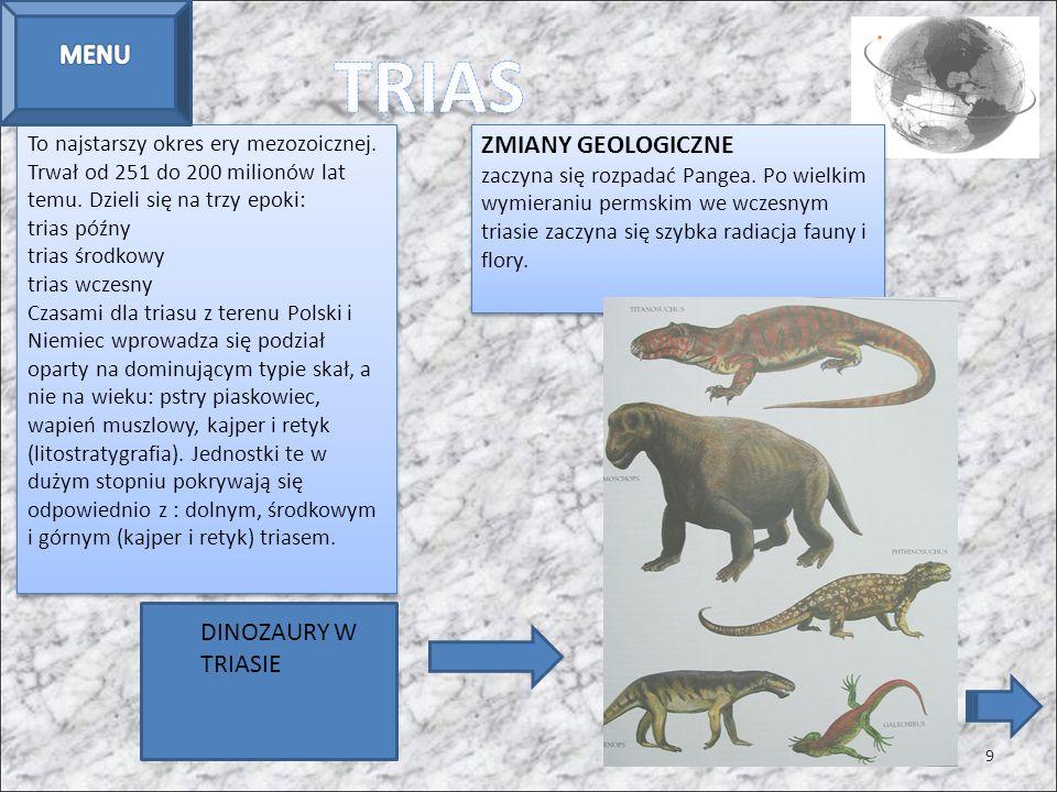 To najstarszy okres ery mezozoicznej. Trwał od 251 do 200 milionów lat temu. Dzieli się na trzy epoki: trias późny trias środkowy trias wczesny Czasam