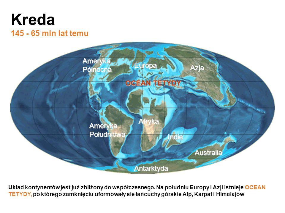 Antarktyda Afryka Indie Australia Ameryka Północna Europa Ameryka Południowa Azja Kreda 145 - 65 mln lat temu Układ kontynentów jest już zbliżony do w