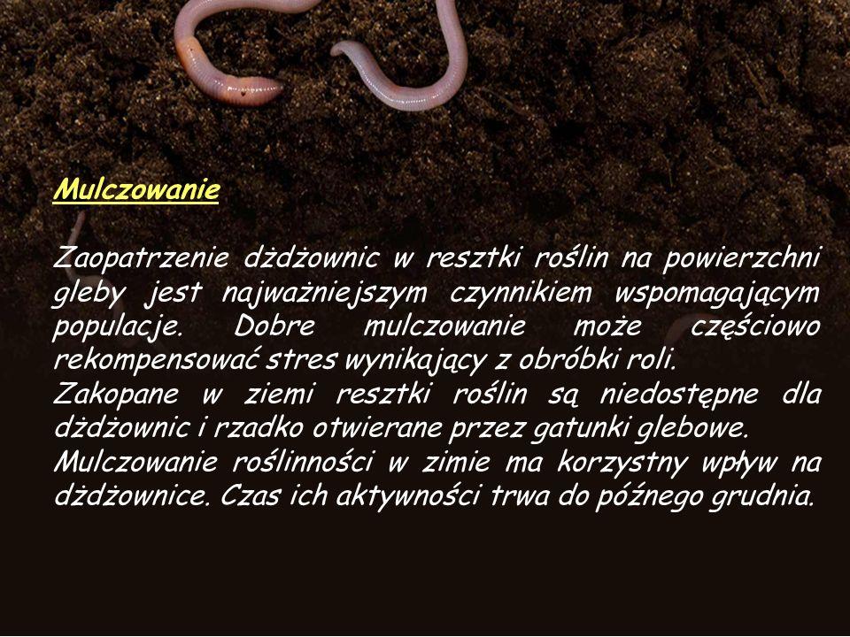 Mulczowanie Zaopatrzenie dżdżownic w resztki roślin na powierzchni gleby jest najważniejszym czynnikiem wspomagającym populacje.
