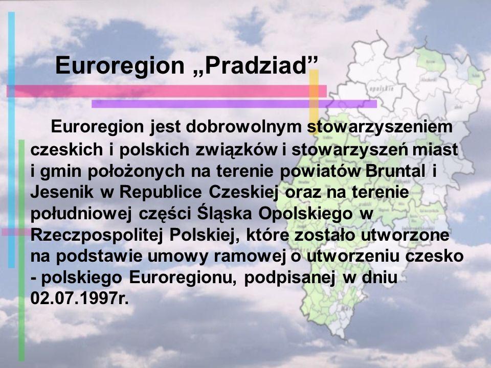 Euroregion jest dobrowolnym stowarzyszeniem czeskich i polskich związków i stowarzyszeń miast i gmin położonych na terenie powiatów Bruntal i Jesenik