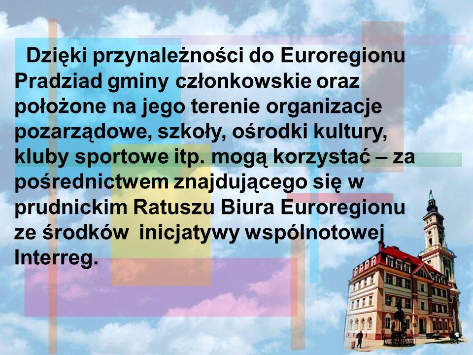 Dzięki przynależności do Euroregionu Pradziad gminy członkowskie oraz położone na jego terenie organizacje pozarządowe, szkoły, ośrodki kultury, kluby